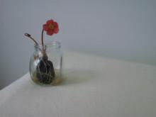 美容室THETA(シータ)のほのぼのニュース                                          TEL03-3947-8665-SH3K0118.jpg